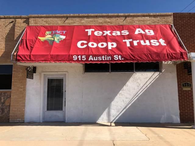 915 Austin Street, Levelland, TX 79336 (MLS #202003946) :: The Lindsey Bartley Team
