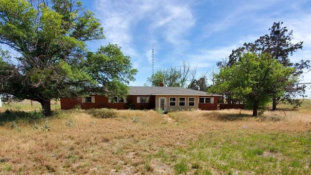 874 County Road 130, Seagraves, TX 79359 (MLS #202004267) :: McDougal Realtors