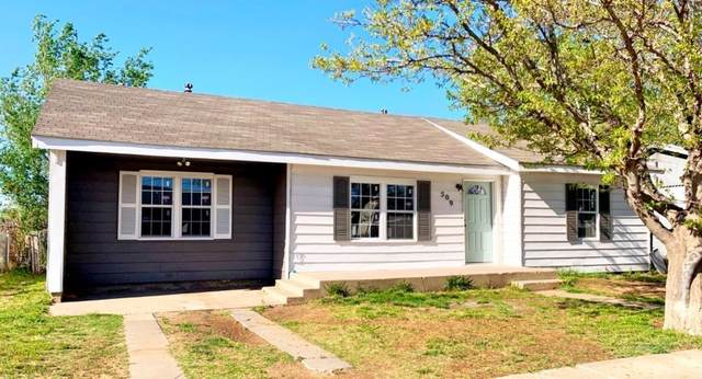 509 E Queens Street, Lubbock, TX 79403 (MLS #202004301) :: Better Homes and Gardens Real Estate Blu Realty