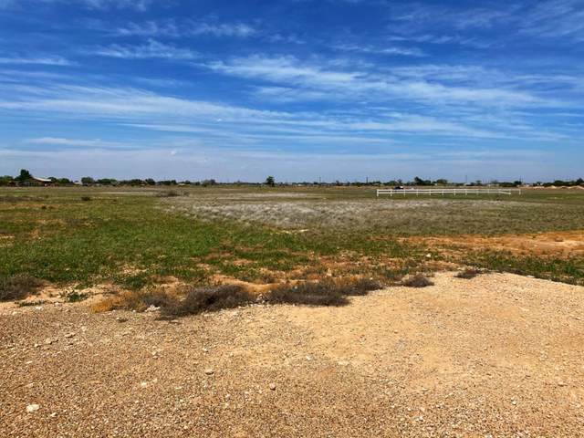 6935 Blue Quail Road, Wolfforth, TX 79382 (MLS #202004505) :: Lyons Realty