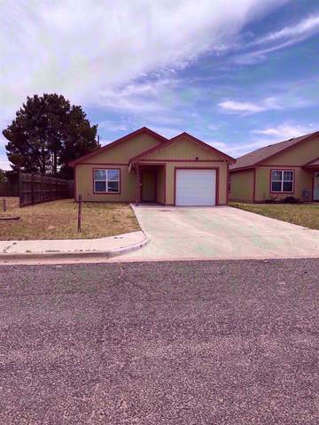 107 80th Street, Lubbock, TX 79404 (MLS #202004857) :: McDougal Realtors
