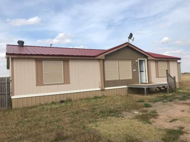 4318 County Road 5500, Lubbock, TX 79415 (MLS #202004881) :: Lyons Realty