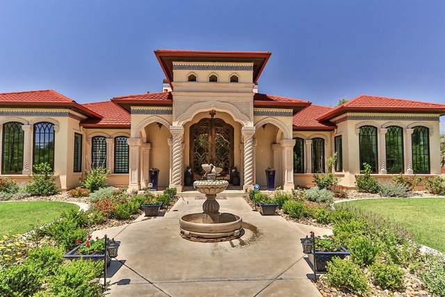 1908 Aberdeen Avenue, Lubbock, TX 79407 (MLS #202004884) :: Lyons Realty