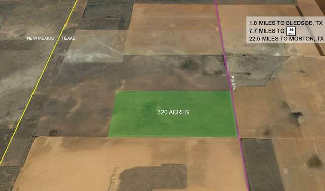 0 Farm Road 595, Morton, TX 79346 (MLS #202004967) :: Lyons Realty
