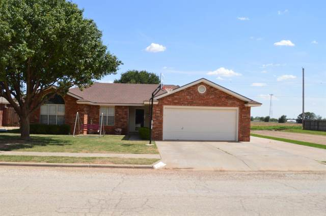 1402 5th Street, Shallowater, TX 79363 (MLS #202005395) :: Better Homes and Gardens Real Estate Blu Realty