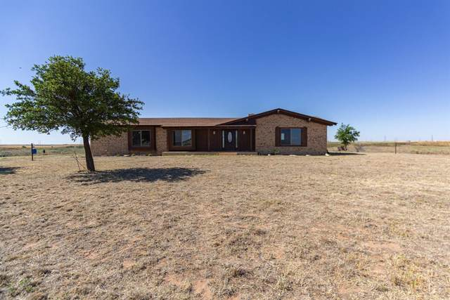 1 County Road 240, Plains, TX 79355 (MLS #202006017) :: The Lindsey Bartley Team