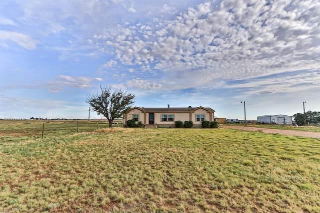 4814 County Road 5300, Lubbock, TX 79415 (MLS #202006059) :: McDougal Realtors