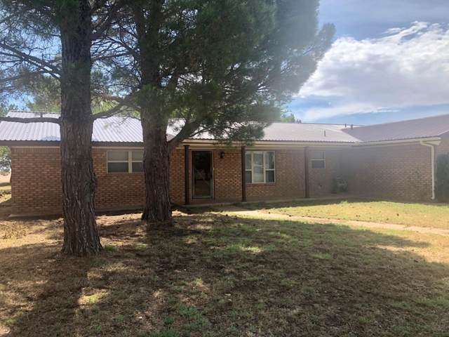 917 S Farm Road 3261, Levelland, TX 79336 (MLS #202006151) :: Better Homes and Gardens Real Estate Blu Realty