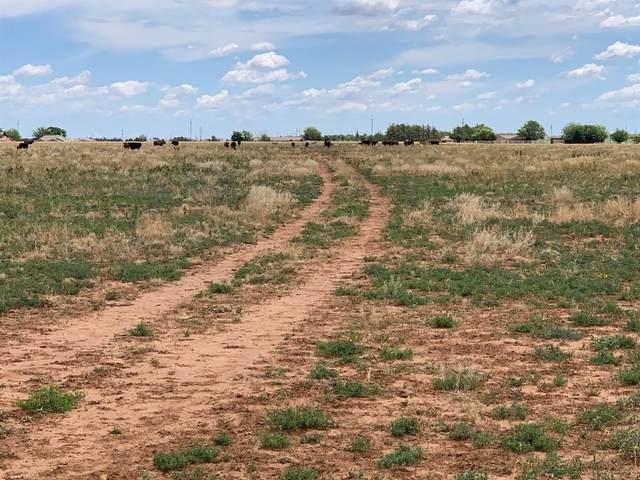 0 N Farm Road 1264 Drive, New Deal, TX 79366 (MLS #202006258) :: The Lindsey Bartley Team