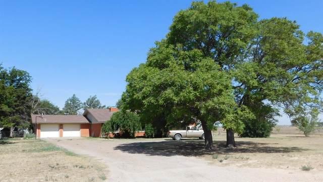510 County Road 193, Muleshoe, TX 79347 (MLS #202007092) :: Duncan Realty Group
