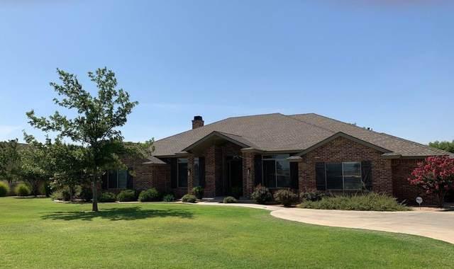 1410 Cactus Drive, Levelland, TX 79336 (MLS #202007115) :: McDougal Realtors