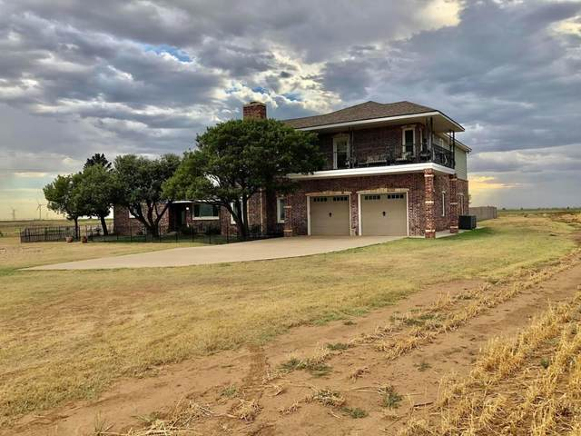 2160 Farm Road 400, Plainview, TX 79072 (MLS #202008274) :: McDougal Realtors