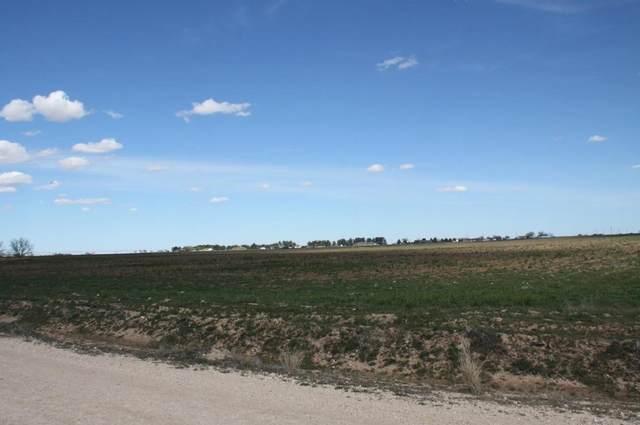 12102 N County Road 1740, Lubbock, TX 79415 (MLS #202008957) :: Reside in Lubbock | Keller Williams Realty