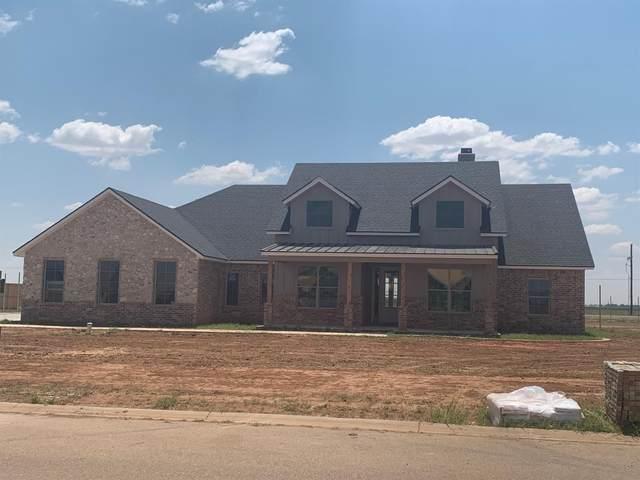 8917 County Road 6875, Lubbock, TX 79424 (MLS #202009462) :: Lyons Realty