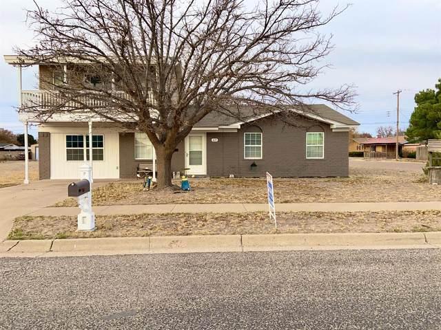 419 Holly Street, Levelland, TX 79336 (MLS #202010837) :: McDougal Realtors