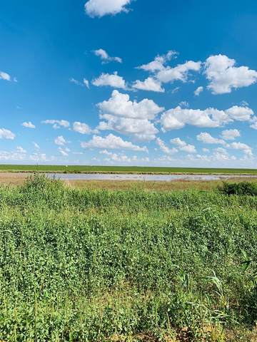 1370 County Road 2, New Home, TX 79383 (MLS #202010903) :: The Lindsey Bartley Team