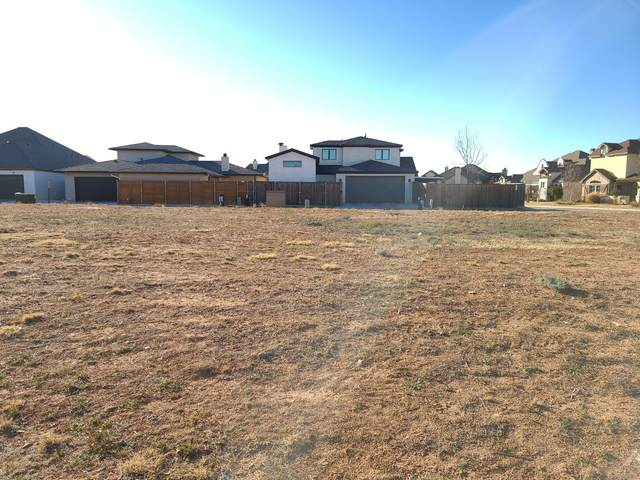 12004 Upton Avenue, Lubbock, TX 79424 (MLS #202011304) :: Reside in Lubbock | Keller Williams Realty