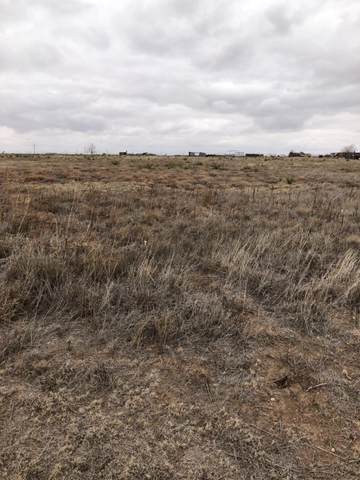 1892 N State Road, Levelland, TX 79336 (MLS #202011370) :: Stacey Rogers Real Estate Group at Keller Williams Realty