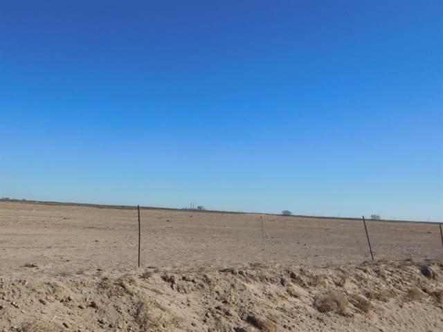 570 County Road 225, Muleshoe, TX 79347 (MLS #202011505) :: Rafter Cross Realty