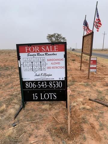 14 Filly Road, Lubbock, TX 79416 (MLS #202011668) :: Rafter Cross Realty