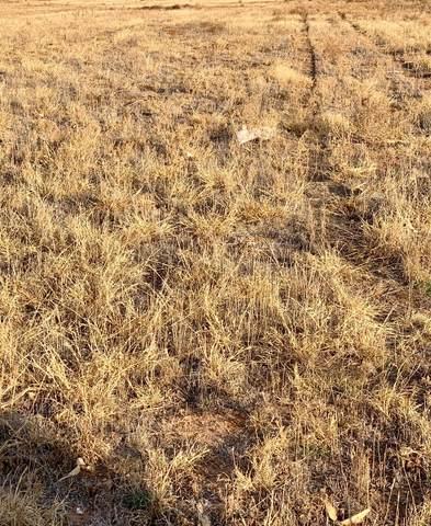 0 Farm Road 400, Idalou, TX  (MLS #202011691) :: Lyons Realty