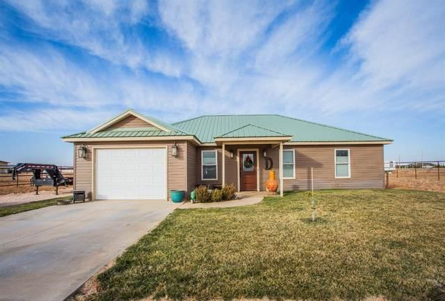318 County Road 306, Seminole, TX 79360 (MLS #202011954) :: Rafter Cross Realty