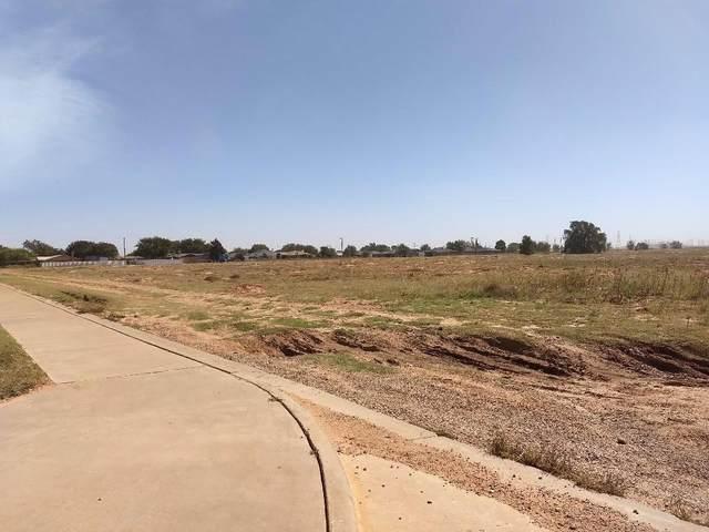7602 Elm Avenue, Lubbock, TX 79404 (MLS #202100021) :: Lyons Realty