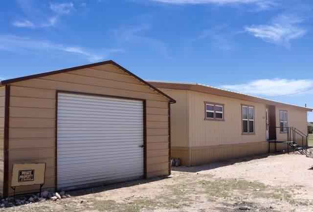 206 County Road 209, Seminole, TX 79360 (MLS #202100041) :: Rafter Cross Realty
