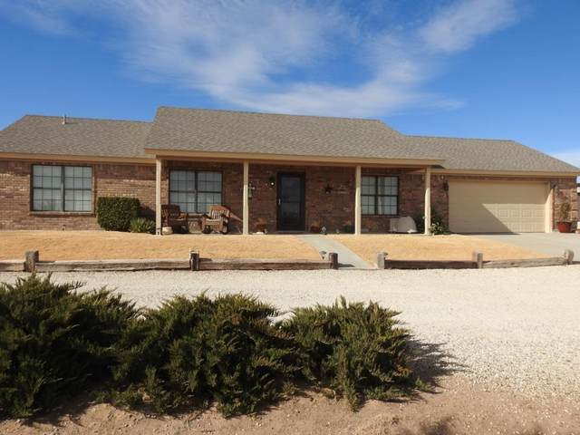 6691-6693 Maine Road, Anton, TX 79313 (MLS #202100151) :: Stacey Rogers Real Estate Group at Keller Williams Realty