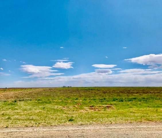 950 Farm Road 1317, Tahoka, TX 79383 (MLS #202100300) :: Stacey Rogers Real Estate Group at Keller Williams Realty