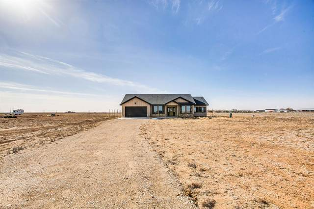 9229 County Road 5700, Shallowater, TX 79363 (MLS #202100508) :: Better Homes and Gardens Real Estate Blu Realty