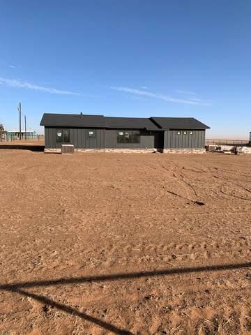 1234 Farm Road 211, New Home, TX 79383 (MLS #202101107) :: Rafter Cross Realty