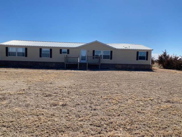 11625 Farm Road 1585, Wolfforth, TX 79382 (MLS #202101201) :: Better Homes and Gardens Real Estate Blu Realty