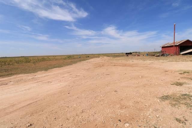 3673 Howard Road, Anton, TX 79313 (MLS #202101509) :: Rafter Cross Realty