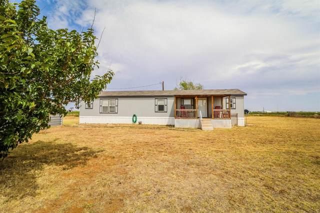 3689 S Farm Road 303, Sundown, TX 79372 (MLS #202101622) :: Rafter Cross Realty