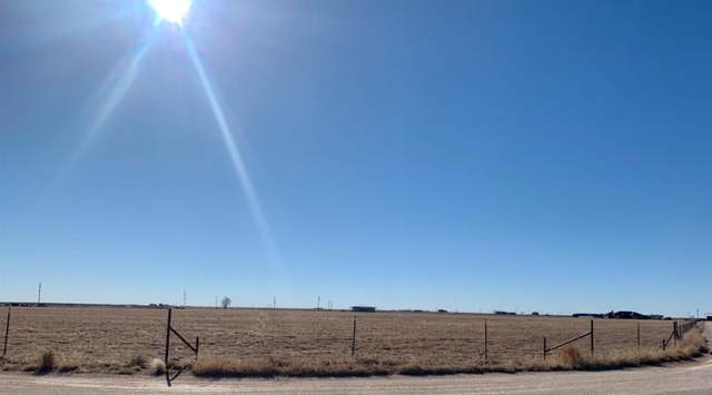 0 County Road M, New Home, TX 79383 (MLS #202101695) :: Lyons Realty