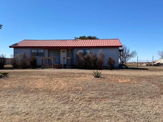 866 State Highway 168, Lubbock, TX 79407 (MLS #202101815) :: Rafter Cross Realty