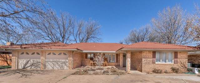 1713 E Carter Drive, Brownfield, TX 79316 (MLS #202101836) :: Rafter Cross Realty