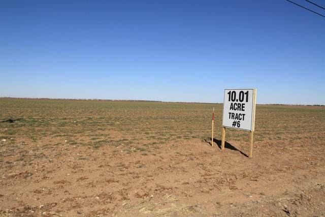 0-Tract 6 County Road 7500, Lubbock, TX 79424 (MLS #202101988) :: The Lindsey Bartley Team