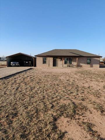 10518 County Road 6910, Lubbock, TX 79407 (MLS #202102177) :: Duncan Realty Group