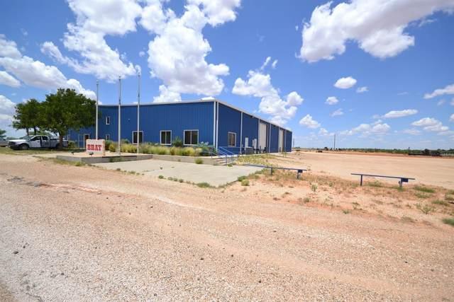 614 W Richardson Street, Sundown, TX 79372 (MLS #202103135) :: Duncan Realty Group