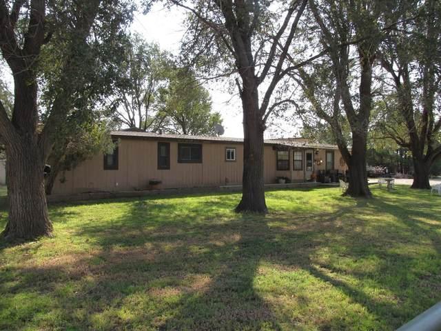 2013 Kelsey Avenue, Lubbock, TX 79407 (MLS #202103279) :: McDougal Realtors