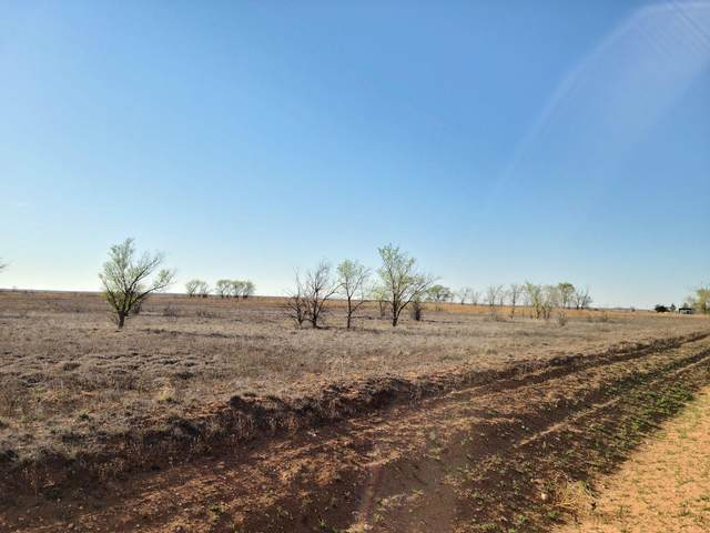 0 County Road 258, Sudan, TX 79371 (MLS #202103868) :: McDougal Realtors
