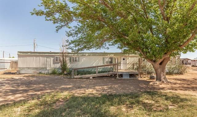 2814 County Road 7650, Lubbock, TX 79423 (MLS #202104625) :: McDougal Realtors