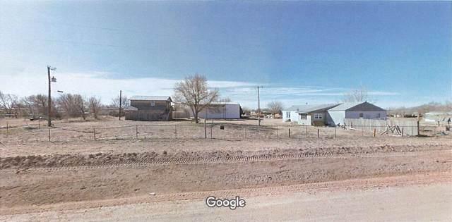9001 Canoga Avenue, Wolfforth, TX 79382 (MLS #202104628) :: McDougal Realtors