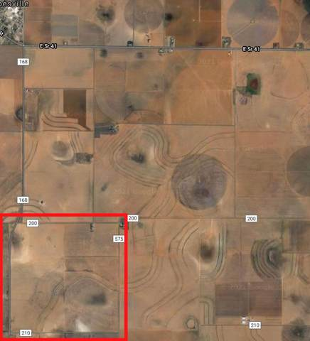 0 Farm Road 168, Other, TX 79316 (MLS #202104638) :: Better Homes and Gardens Real Estate Blu Realty