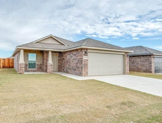 10105 Venita Avenue, Lubbock, TX 79424 (MLS #202104650) :: McDougal Realtors