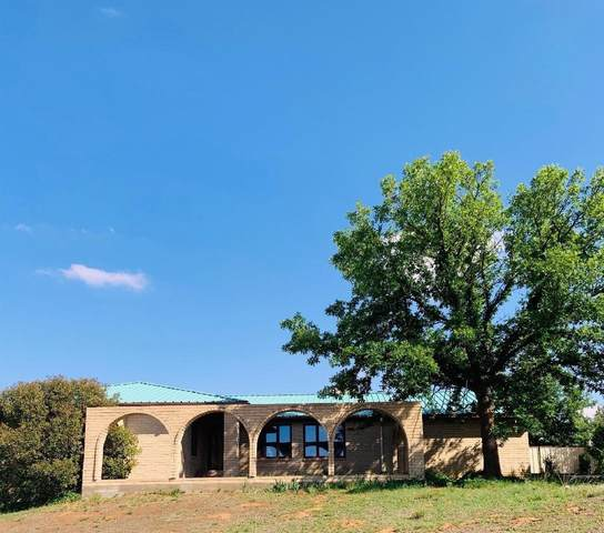 2040 Timmons Drive, Brownfield, TX 79316 (MLS #202104878) :: Lyons Realty