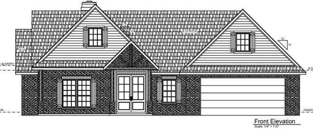 305 Cowboy Lane, Wolfforth, TX 79382 (MLS #202104933) :: Duncan Realty Group
