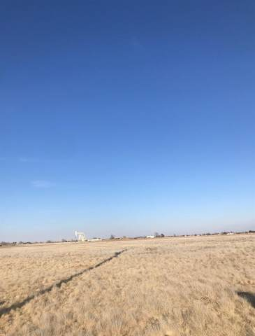 0 Blue Quail, Wolfforth, TX 79382 (MLS #202105273) :: Stacey Rogers Real Estate Group at Keller Williams Realty